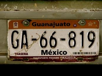 G. License